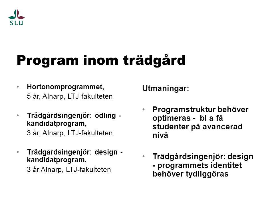•Hortonomprogrammet, 5 år, Alnarp, LTJ-fakulteten •Trädgårdsingenjör: odling - kandidatprogram, 3 år, Alnarp, LTJ-fakulteten •Trädgårdsingenjör: design - kandidatprogram, 3 år Alnarp, LTJ-fakulteten Utmaningar: •Programstruktur behöver optimeras - bl a få studenter på avancerad nivå •Trädgårdsingenjör: design - programmets identitet behöver tydliggöras Program inom trädgård