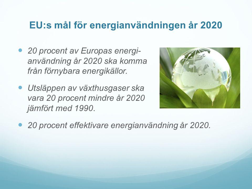 EU:s mål för energianvändningen år 2020  20 procent av Europas energi- användning år 2020 ska komma från förnybara energikällor.