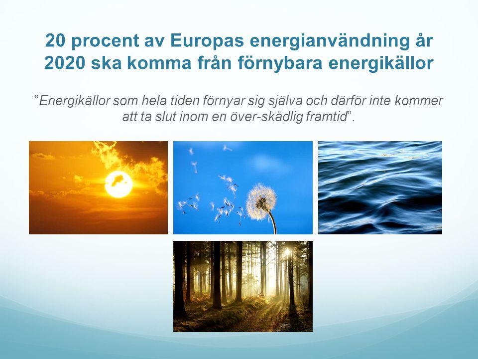 20 procent av Europas energianvändning år 2020 ska komma från förnybara energikällor Energikällor som hela tiden förnyar sig själva och därför inte kommer att ta slut inom en över-skådlig framtid .