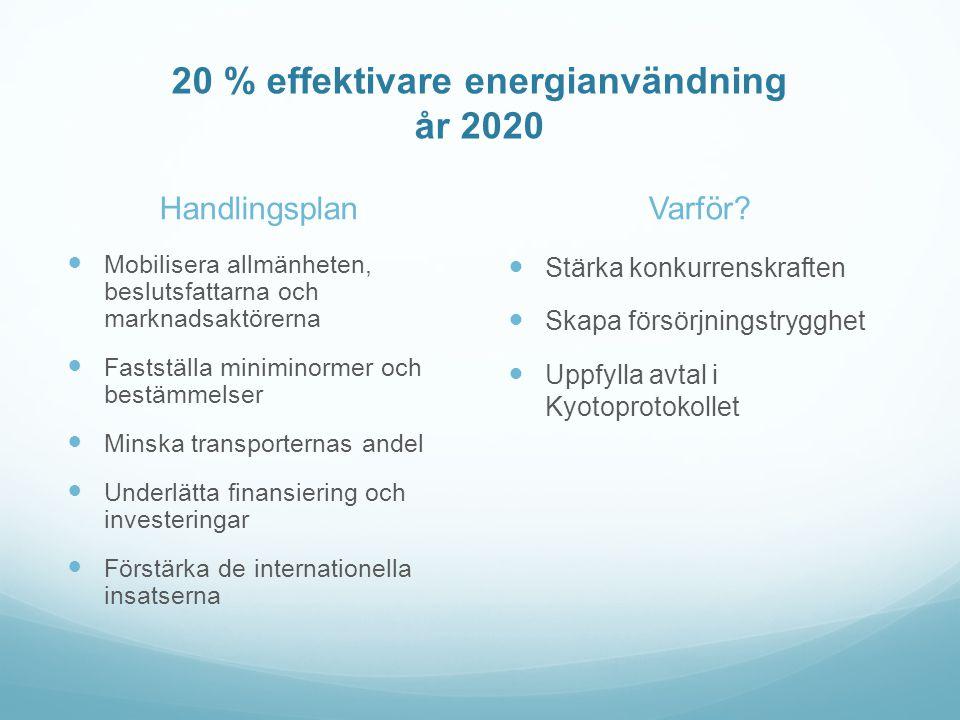 20 % effektivare energianvändning år 2020 Handlingsplan  Mobilisera allmänheten, beslutsfattarna och marknadsaktörerna  Fastställa miniminormer och bestämmelser  Minska transporternas andel  Underlätta finansiering och investeringar  Förstärka de internationella insatserna Varför.