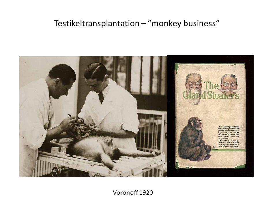 "Testikeltransplantation – ""monkey business"" Voronoff 1920"