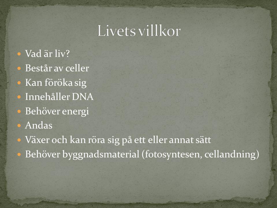  Vad är liv?  Består av celler  Kan föröka sig  Innehåller DNA  Behöver energi  Andas  Växer och kan röra sig på ett eller annat sätt  Behöver