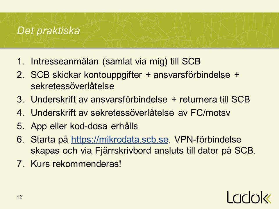 12 Det praktiska 1.Intresseanmälan (samlat via mig) till SCB 2.SCB skickar kontouppgifter + ansvarsförbindelse + sekretessöverlåtelse 3.Underskrift av