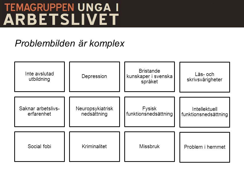 Problembilden är komplex Inte avslutad utbildning Depression Bristande kunskaper i svenska språket Läs- och skrivsvårigheter Saknar arbetslivs- erfare