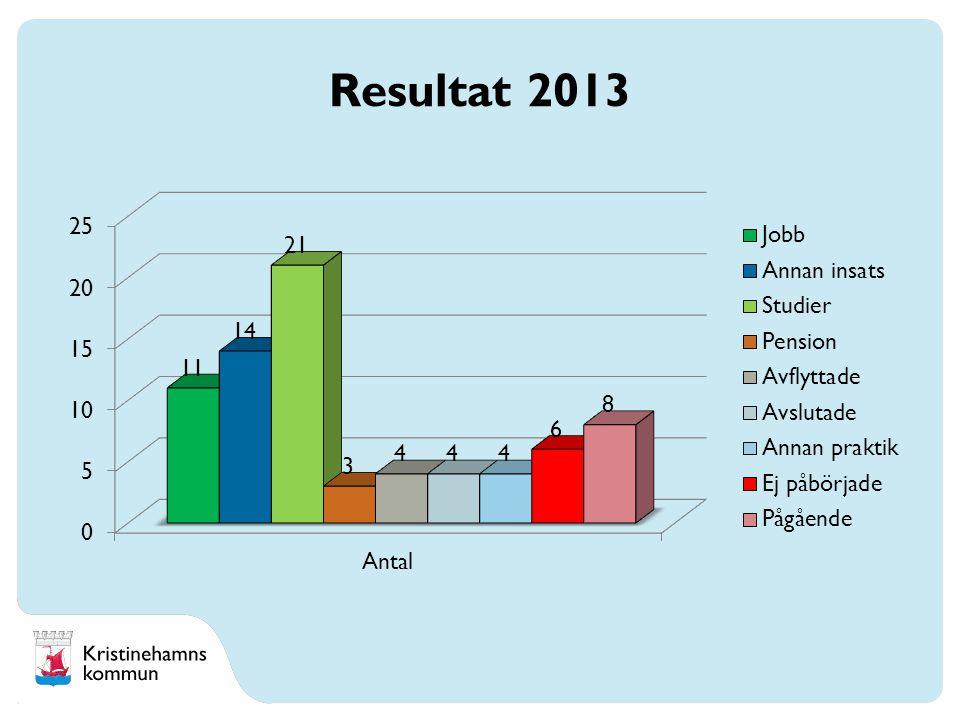 Resultat 2013