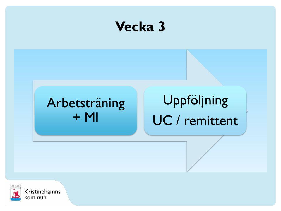 Arbetsträning + MI Uppföljning UC / remittent Vecka 3