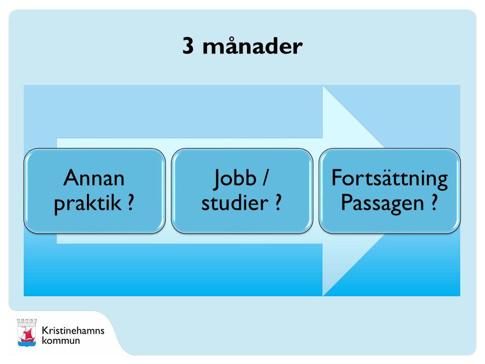 Annan praktik Jobb / studier Fortsättning Passagen 3 månader
