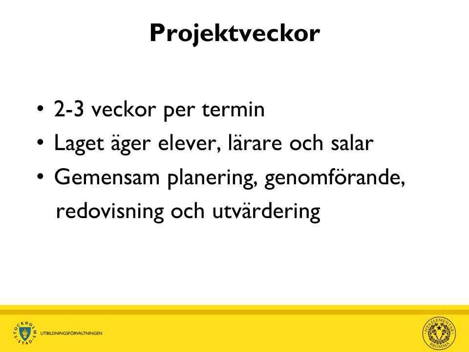 Projektveckor • 2-3 veckor per termin • Laget äger elever, lärare och salar • Gemensam planering, genomförande, redovisning och utvärdering