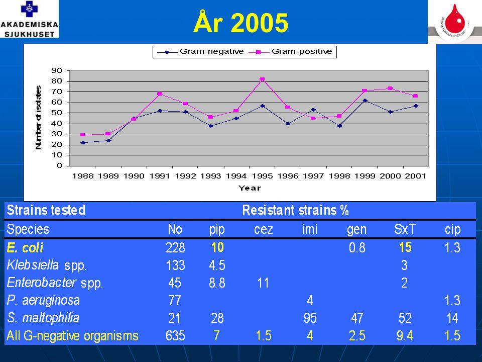 År 2005 I