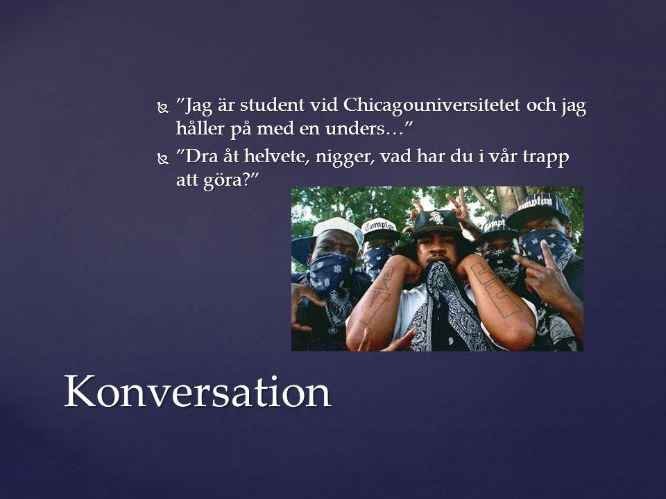 """ """"Jag är student vid Chicagouniversitetet och jag håller på med en unders…""""  """"Dra åt helvete, nigger, vad har du i vår trapp att göra?"""" Konversation"""