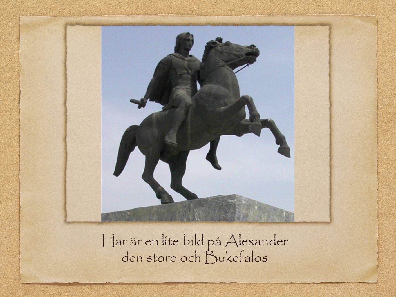 Alexander den stores stridsformation Alexander den stores stridståg var 16 rader och 16 st i varje rad.