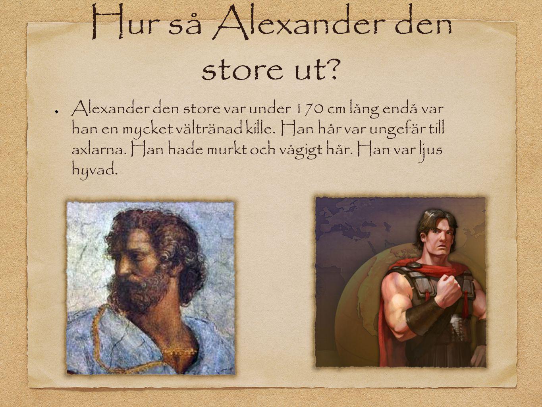 Hur så Alexander den store ut? Alexander den store var under 170 cm lång endå var han en mycket vältränad kille. Han hår var ungefär till axlarna. Han