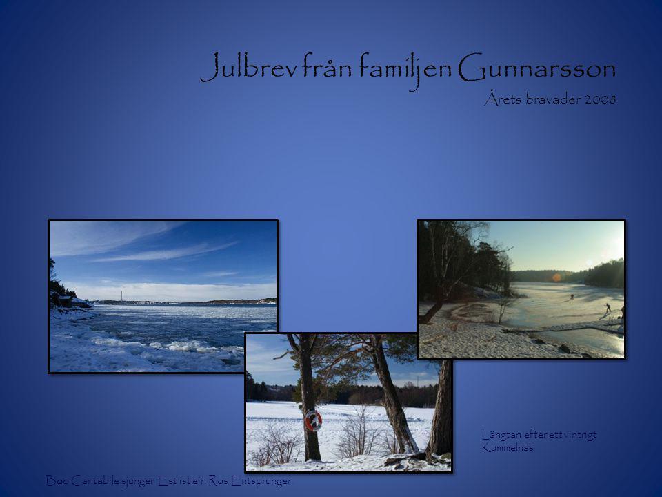 Julbrev från familjen Gunnarsson Årets bravader 2008 Längtan efter ett vintrigt Kummelnäs Boo Cantabile sjunger Est ist ein Ros Entsprungen