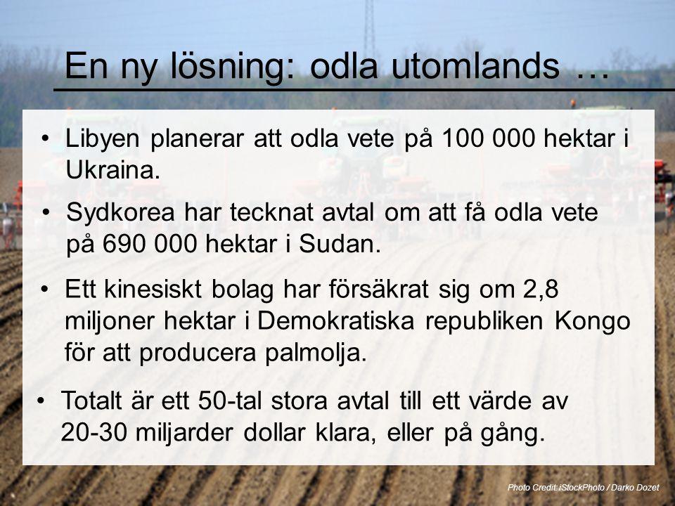 En ny lösning: odla utomlands … •Libyen planerar att odla vete på 100 000 hektar i Ukraina. Photo Credit: iStockPhoto / Darko Dozet •Sydkorea har teck