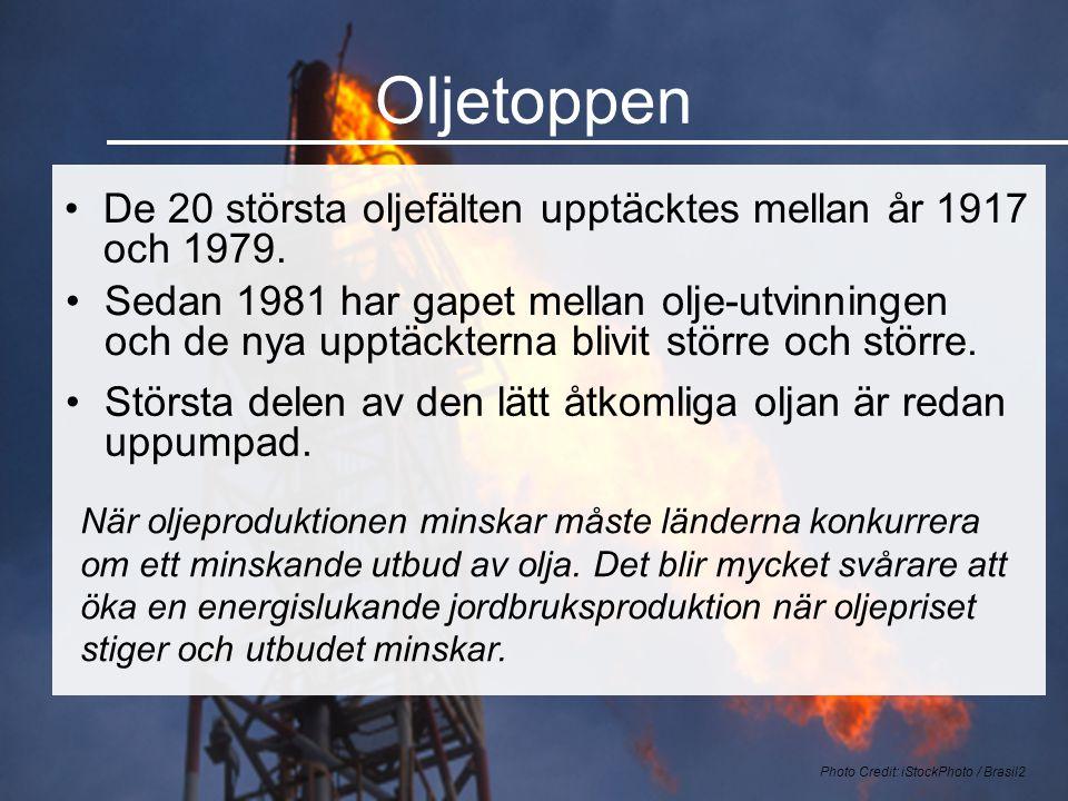 Oljetoppen •De 20 största oljefälten upptäcktes mellan år 1917 och 1979. Photo Credit: iStockPhoto / Brasil2 När oljeproduktionen minskar måste länder