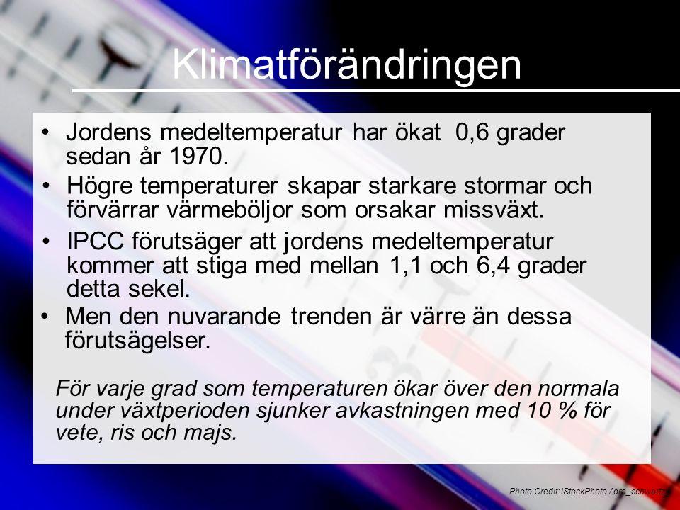 Klimatförändringen •Jordens medeltemperatur har ökat 0,6 grader sedan år 1970.
