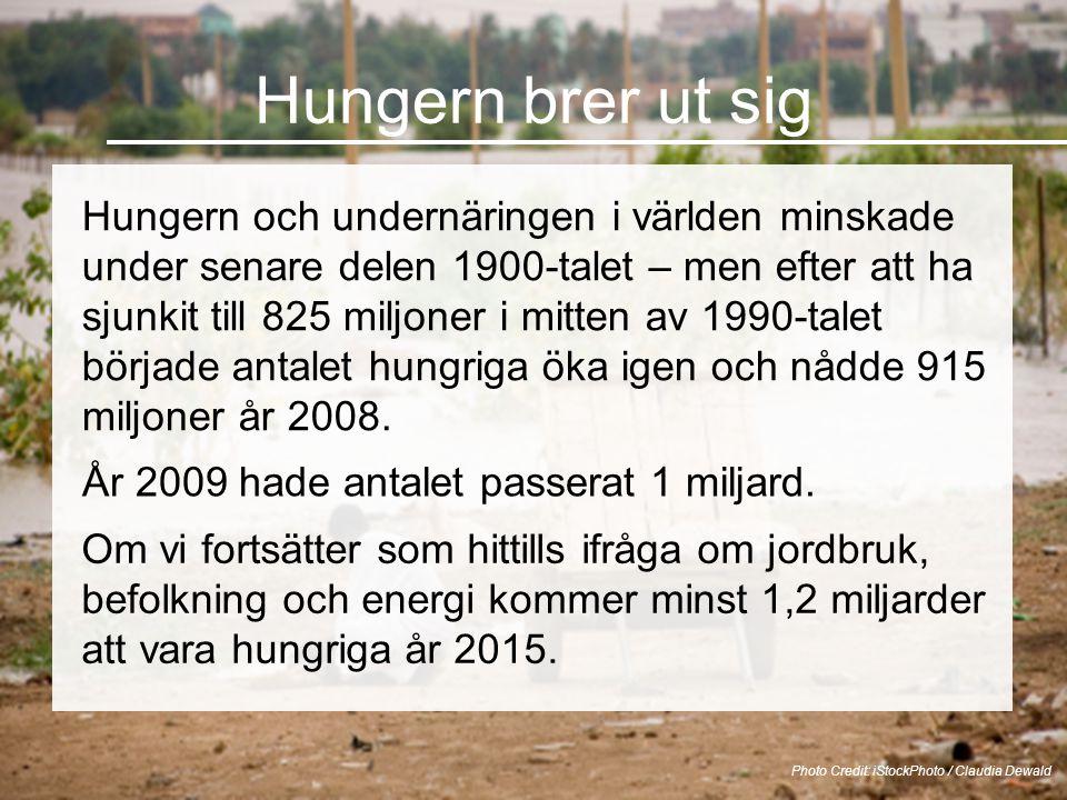 Hungern brer ut sig Hungern och undernäringen i världen minskade under senare delen 1900-talet – men efter att ha sjunkit till 825 miljoner i mitten av 1990-talet började antalet hungriga öka igen och nådde 915 miljoner år 2008.
