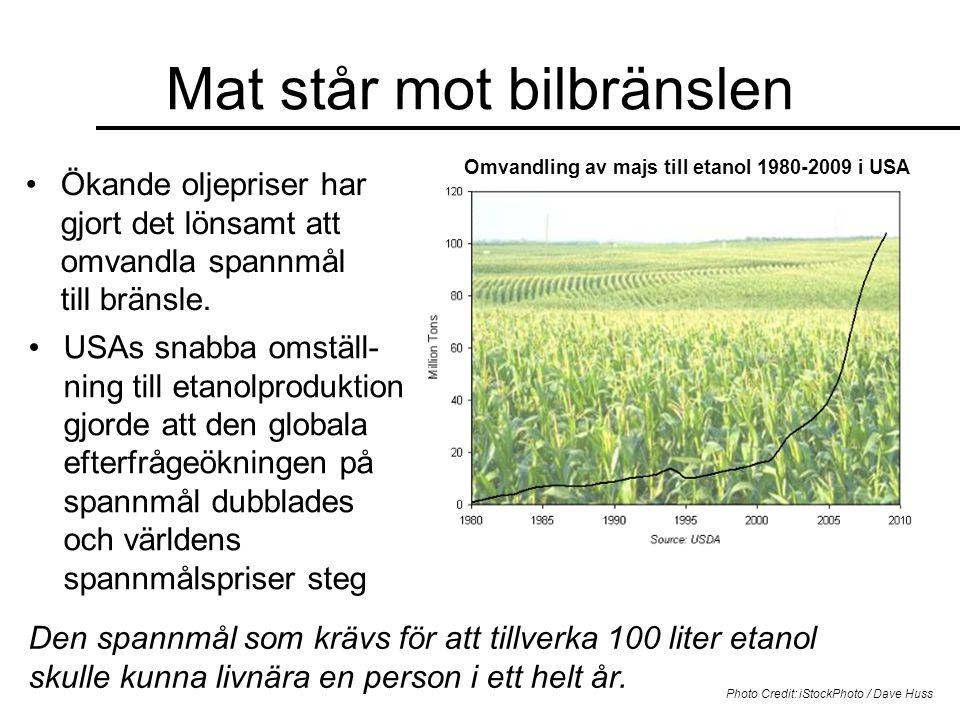 Mat står mot bilbränslen Omvandling av majs till etanol 1980-2009 i USA •Ökande oljepriser har gjort det lönsamt att omvandla spannmål till bränsle. D