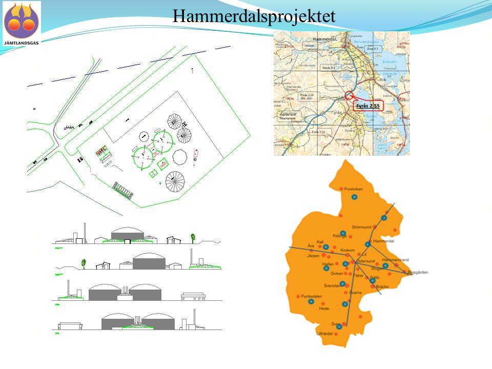 Hammerdalsprojektet