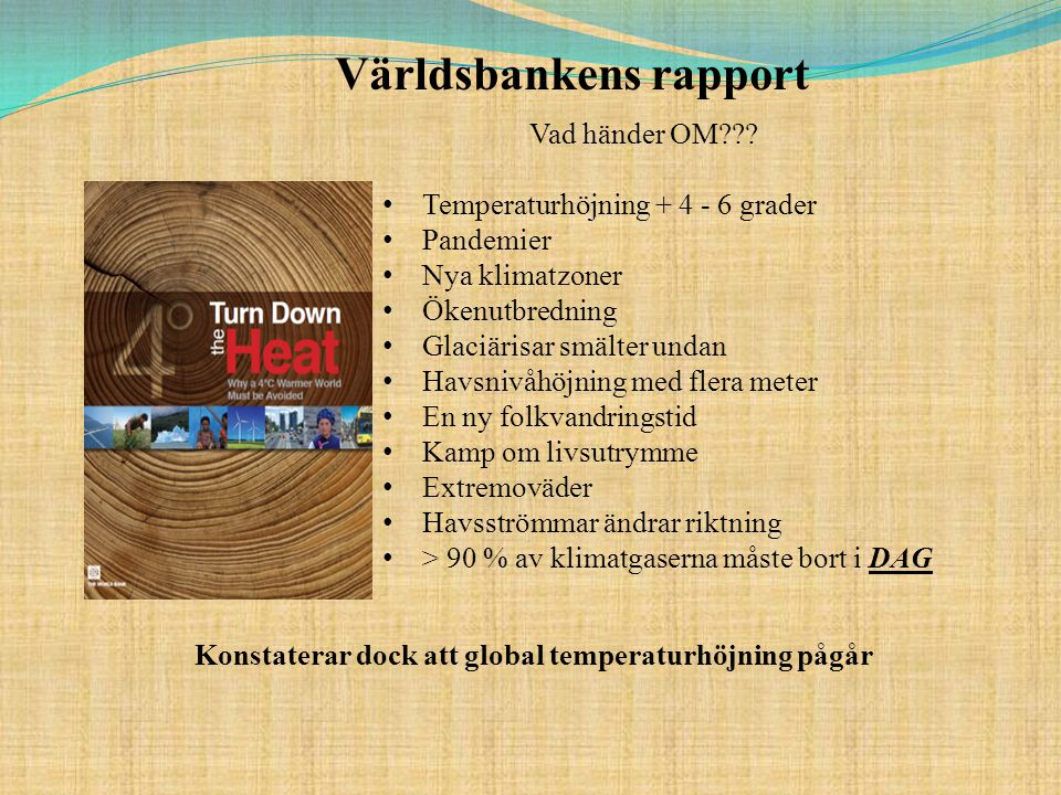 Världsbankens rapport Vad händer OM??.