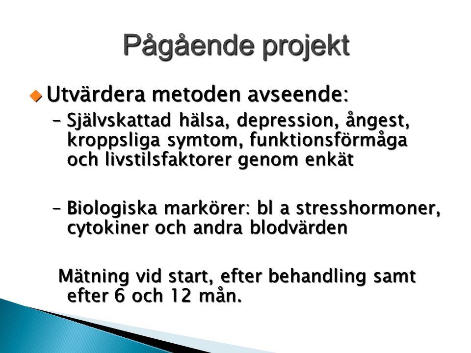 Pågående projekt  Utvärdera metoden avseende: –Självskattad hälsa, depression, ångest, kroppsliga symtom, funktionsförmåga och livstilsfaktorer genom