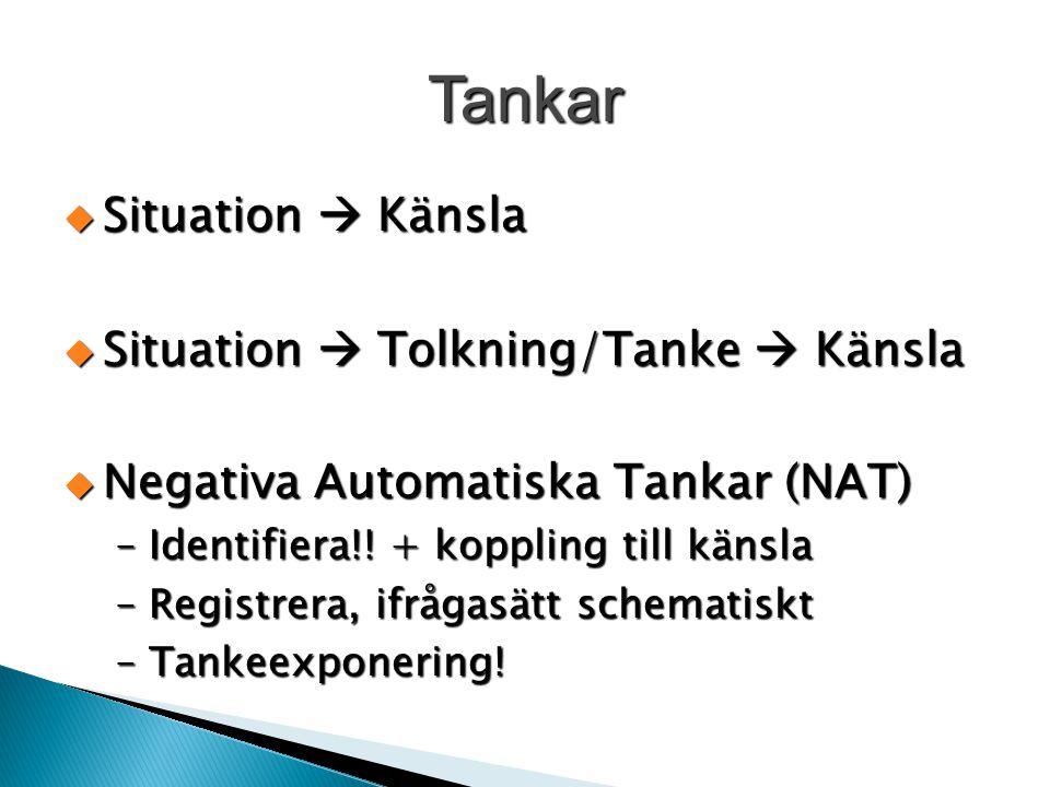 Tankar  Situation  Känsla  Situation  Tolkning/Tanke  Känsla  Negativa Automatiska Tankar (NAT) –Identifiera!! + koppling till känsla –Registrer