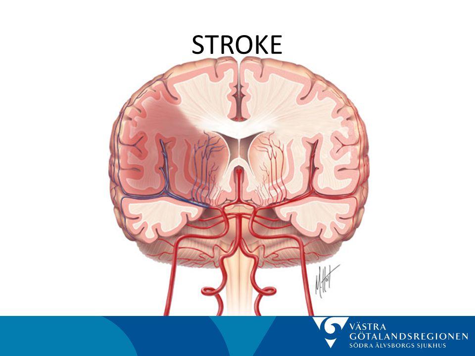STROKE • Hjärnvägen – Hjärnvägen är ett snabbspår från ambulansen via Röntgen till Strokeenhet, R65 – Syftet är att kunna initiera diagnostiska, terapeutiska och sekundärprofylaktiska åtgärder tidigast möjligt – Tidig insatt behandling/sekundärprevention minskar risken för handikappande stroke från cirka 10 % till cirka 2 % efter 3 månader – Idag exkluderas räddahjärnan-kandidaterna
