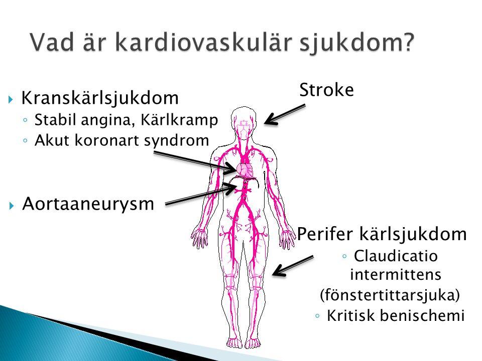 Stroke Perifer kärlsjukdom ◦ Claudicatio intermittens (fönstertittarsjuka) ◦ Kritisk benischemi  Kranskärlsjukdom ◦ Stabil angina, Kärlkramp ◦ Akut k