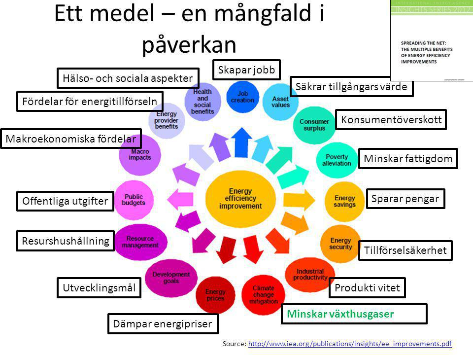 Source: http://www.iea.org/publications/insights/ee_improvements.pdfhttp://www.iea.org/publications/insights/ee_improvements.pdf Ett medel – en mångfa