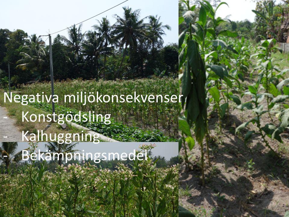 Negativa miljökonsekvenser -Konstgödsling -Kalhuggning -Bekämpningsmedel