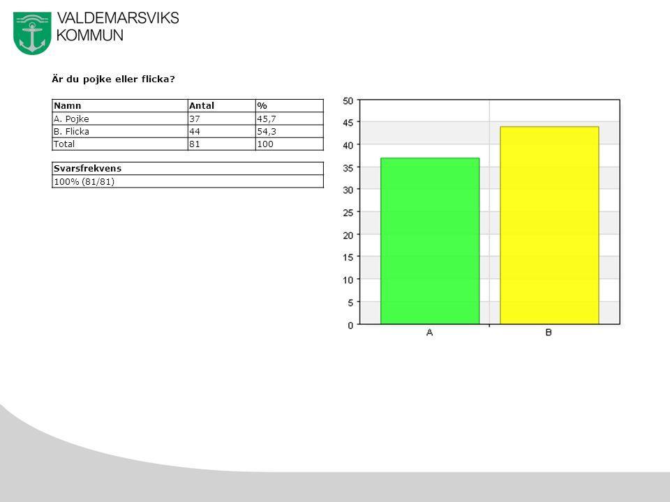 23 f) Hembränt NamnAntal% A.Mycket svårt1441,2 B.