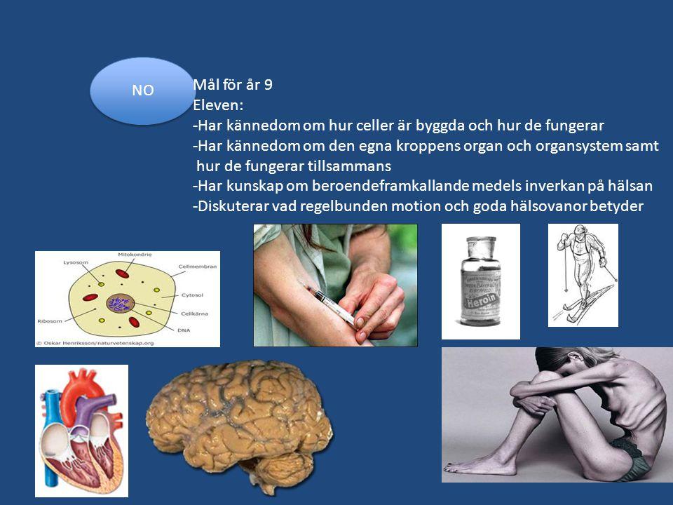 NO Mål för år 9 Eleven: -Har kännedom om hur celler är byggda och hur de fungerar -Har kännedom om den egna kroppens organ och organsystem samt hur de
