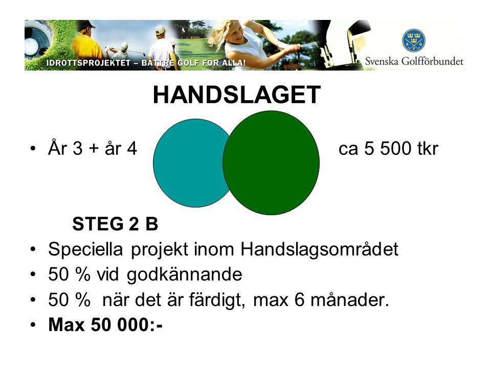 HANDSLAGET •År 3 + år 4 ca 5 500 tkr STEG 2 B •Speciella projekt inom Handslagsområdet •50 % vid godkännande •50 % när det är färdigt, max 6 månader.