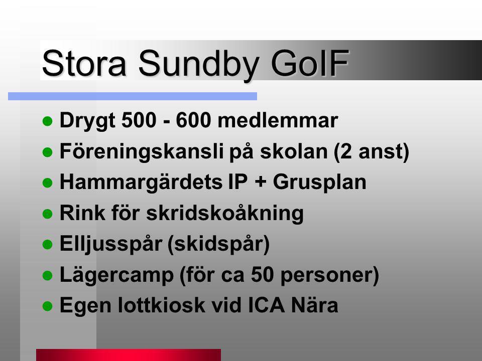 Stora Sundby GoIF  Drygt 500 - 600 medlemmar  Föreningskansli på skolan (2 anst)  Hammargärdets IP + Grusplan  Rink för skridskoåkning  Elljusspå