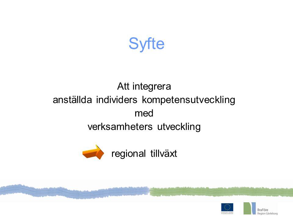 1/8 2011 – 31/12 2013 ESF finansierar Budget 29,5 miljoner Projektägare Region Gävleborg Branschanknuten och Företagsnära kompetensförsörjning