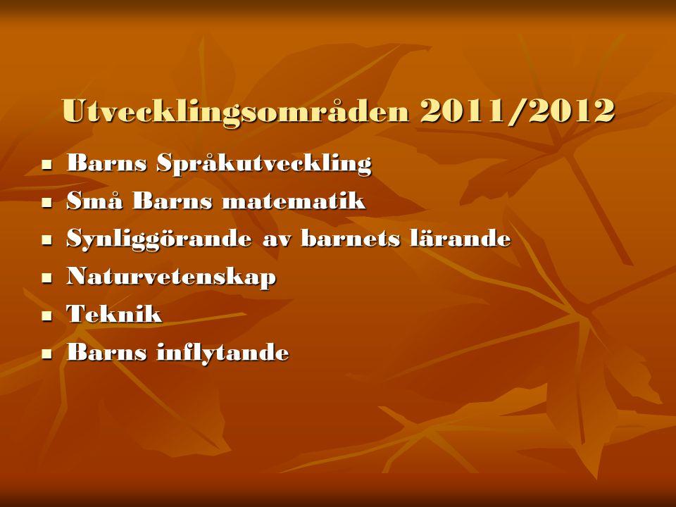 Fortbildning 2011/2012  Naturvetenskap och teknik  Individuell utbildning inom ovanstående områden  Pedagogisk dokumentation