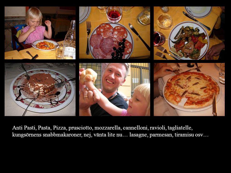 Anti Pasti, Pasta, Pizza, prusciotto, mozzarella, cannelloni, ravioli, tagliatelle, kungsörnens snabbmakaroner, nej, vänta lite nu… lasagne, parmesan, tiramisu osv…