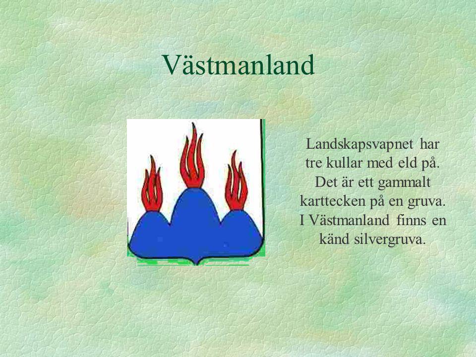 Västmanland Landskapsvapnet har tre kullar med eld på. Det är ett gammalt karttecken på en gruva. I Västmanland finns en känd silvergruva.