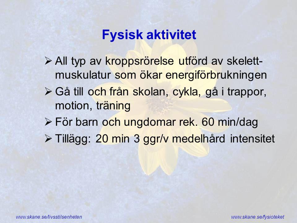 www.skane.se/livsstilsenhetenwww.skane.se/fysioteket Fysisk aktivitet  All typ av kroppsrörelse utförd av skelett- muskulatur som ökar energiförbrukn