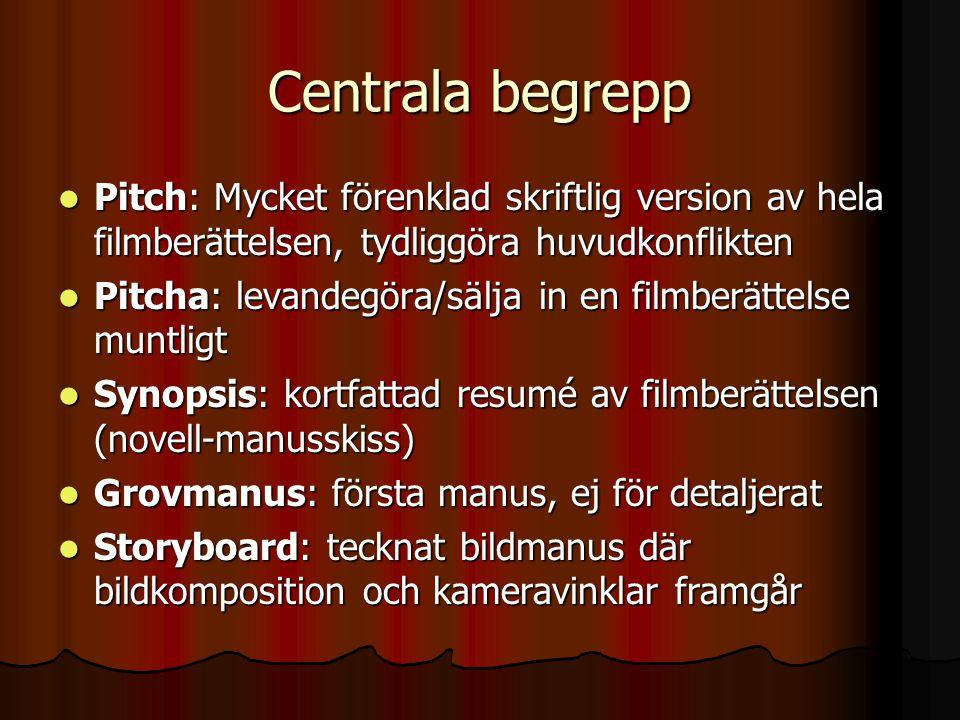 Centrala begrepp  Pitch: Mycket förenklad skriftlig version av hela filmberättelsen, tydliggöra huvudkonflikten  Pitcha: levandegöra/sälja in en fil