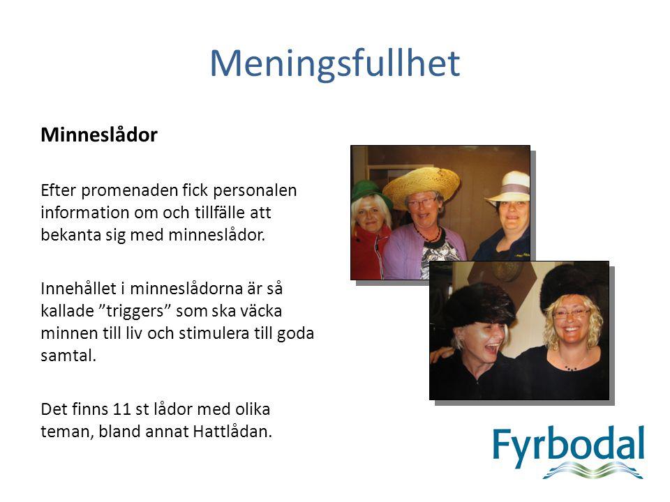 Meningsfullhet Minneslådor Efter promenaden fick personalen information om och tillfälle att bekanta sig med minneslådor.