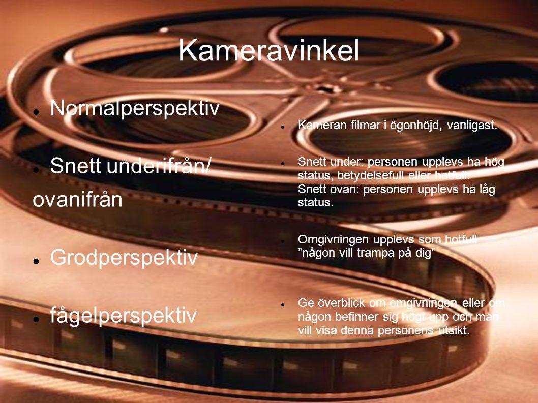 Kameravinkel  Normalperspektiv  Snett underifrån/ ovanifrån  Grodperspektiv  fågelperspektiv  Kameran filmar i ögonhöjd, vanligast.  Snett under
