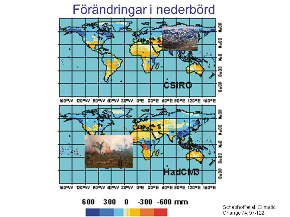 Schaphoff et al. Climatic Change 74, 97-122. Förändringar i nederbörd