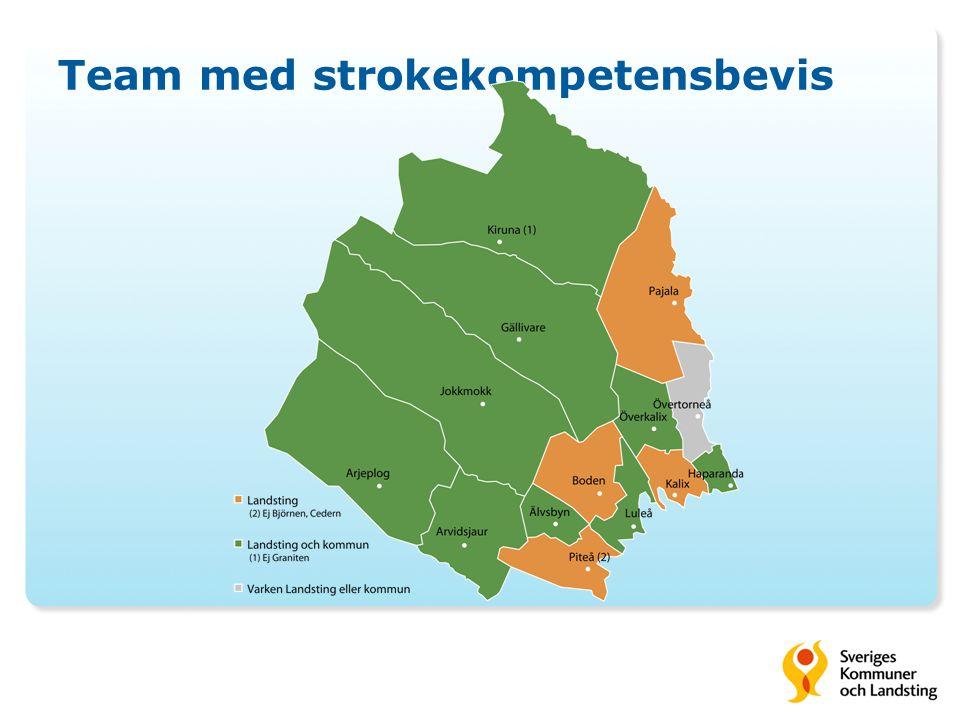 Team med strokekompetensbevis