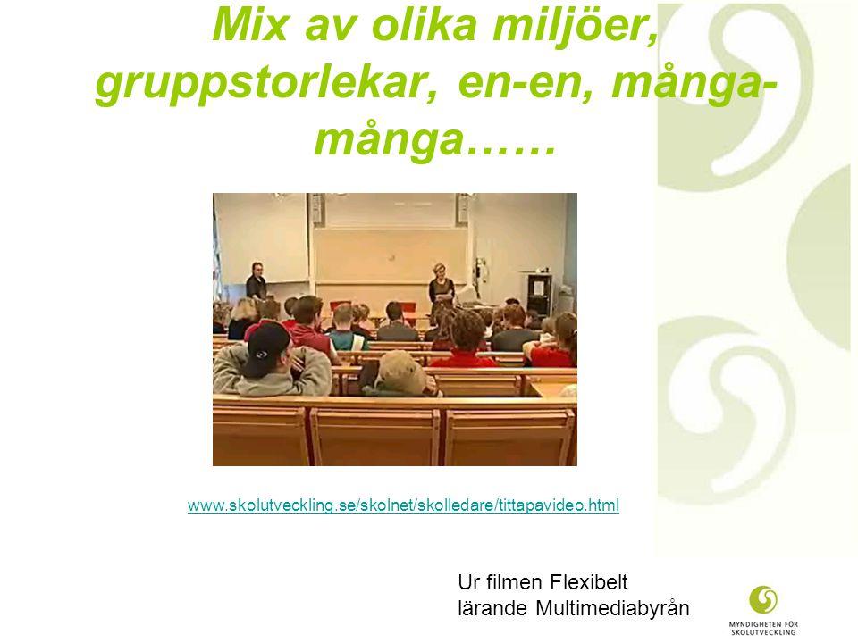 Mix av olika miljöer, gruppstorlekar, en-en, många- många…… Ur filmen Flexibelt lärande Multimediabyrån www.skolutveckling.se/skolnet/skolledare/tittapavideo.html