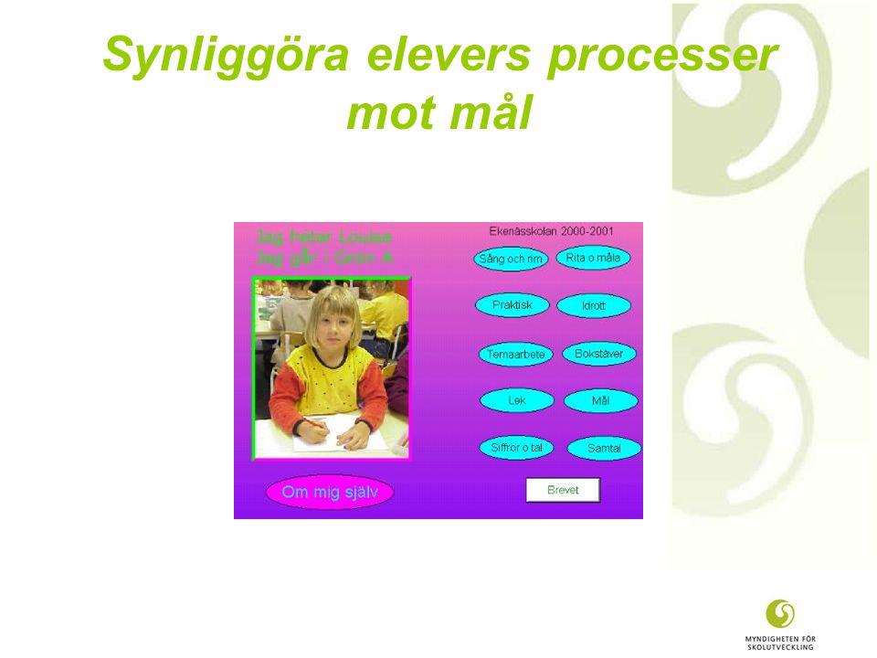 Synliggöra elevers processer mot mål