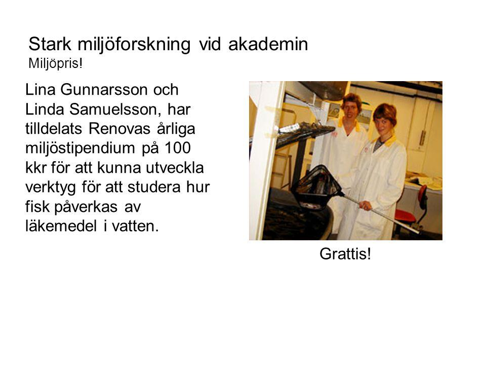 Lina Gunnarsson och Linda Samuelsson, har tilldelats Renovas årliga miljöstipendium på 100 kkr för att kunna utveckla verktyg för att studera hur fisk påverkas av läkemedel i vatten.