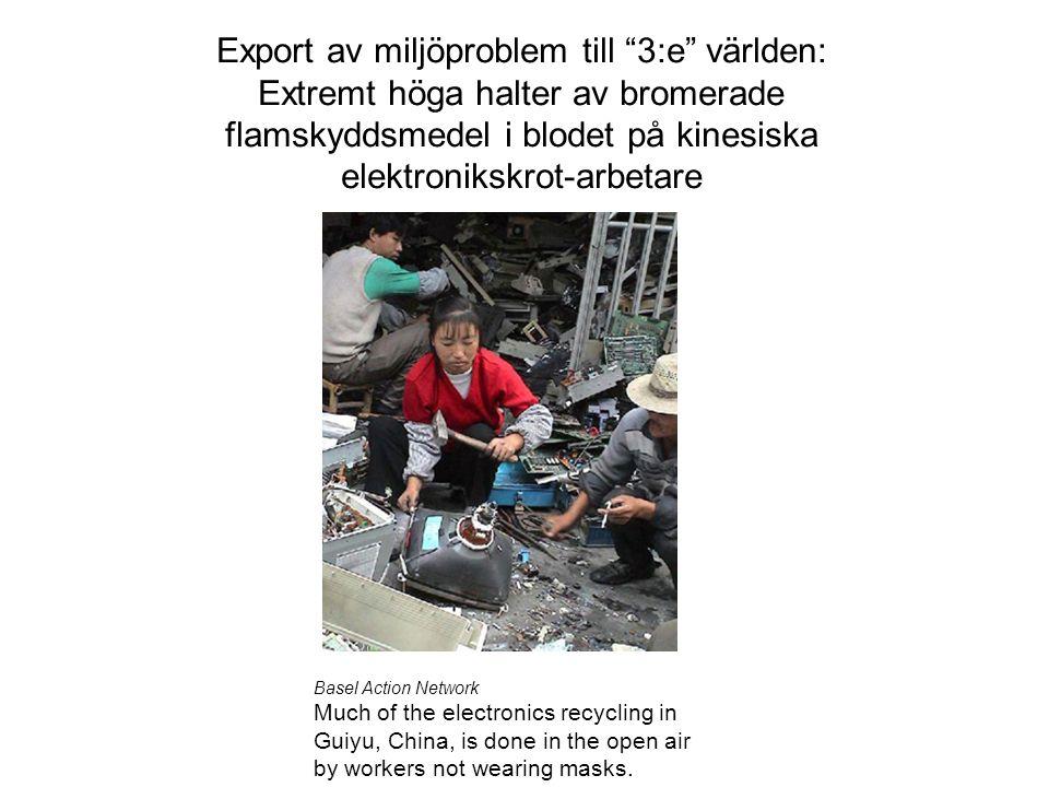 """Export av miljöproblem till """"3:e"""" världen: Extremt höga halter av bromerade flamskyddsmedel i blodet på kinesiska elektronikskrot-arbetare Basel Actio"""