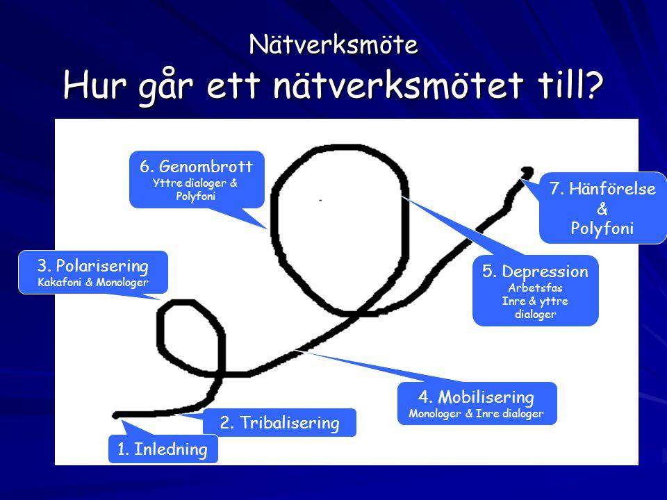 Nätverksmöte Hur går ett nätverksmötet till? 2. Tribalisering 3. Polarisering Kakafoni & Monologer 4. Mobilisering Monologer & Inre dialoger 5. Depres