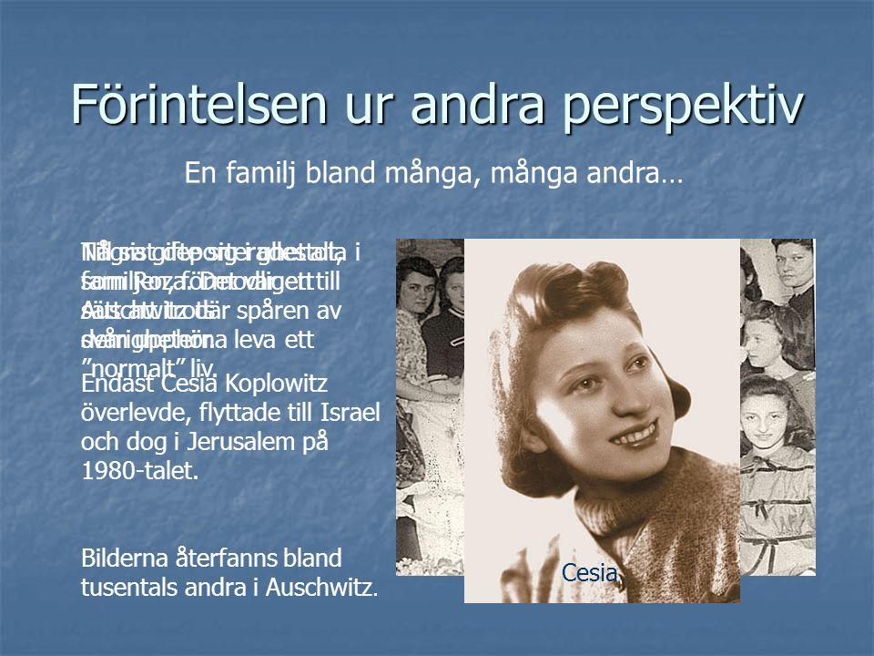 Förintelsen ur andra perspektiv En familj bland många, många andra… Några gifte sig i ghettot, som Roza.
